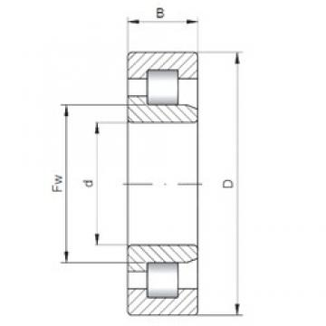 120 mm x 260 mm x 55 mm  ISO NJ324 cylindrical roller bearings