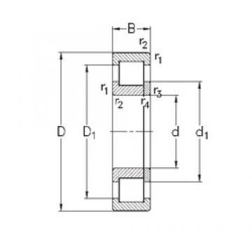 120 mm x 260 mm x 55 mm  NKE NUP324-E-TVP3 cylindrical roller bearings